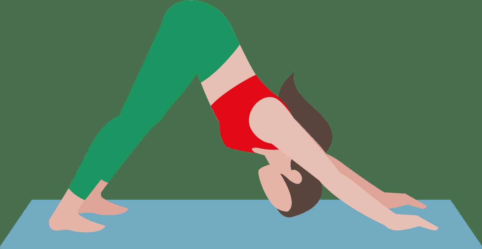 Hatha Yoga ist perfekt für Yoga-Einsteiger